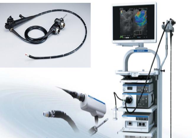 超音波内視鏡(EUS)システム